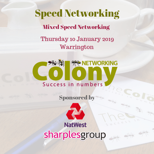 Speed Networking Spring 2019