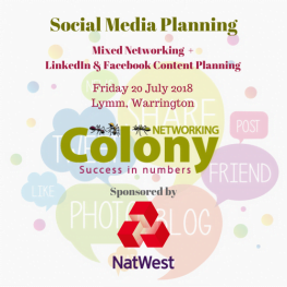 Colony Networking Social Media Planning