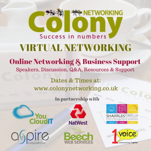 Colony Networking Virtual Lunch – Psychometrics