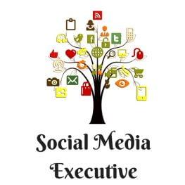Social Media Executive