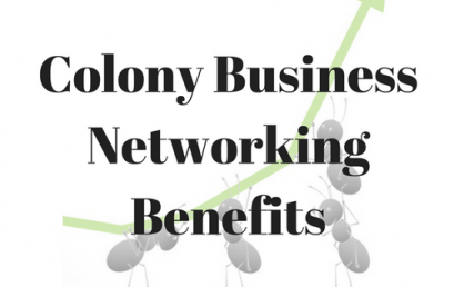 Colony Business Networking Benefits